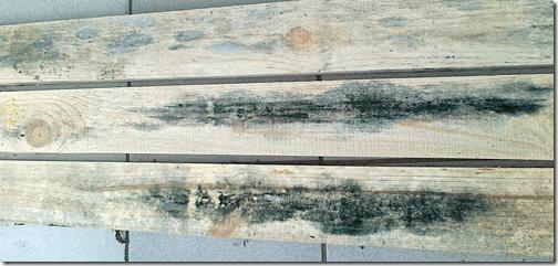 Если деревянный забор повредил грибок